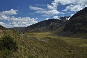 Nevado Pastoruri (162)