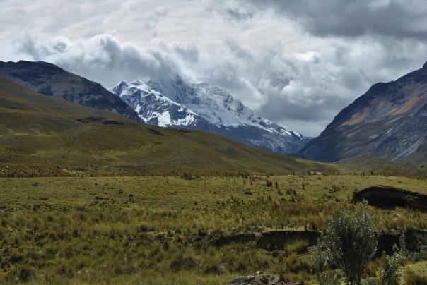 Nevado Pastoruri (75)
