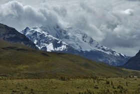Nevado Pastoruri (77)