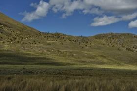 Nevado Pastoruri (78)