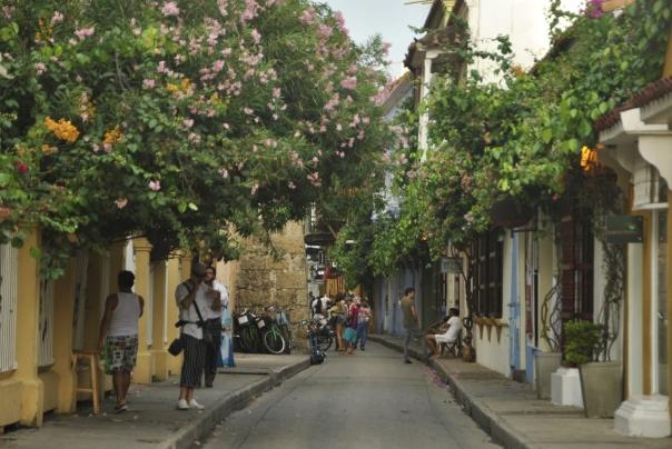 Cartagena (269)