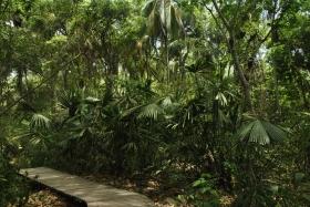 PN Tayrona (9)