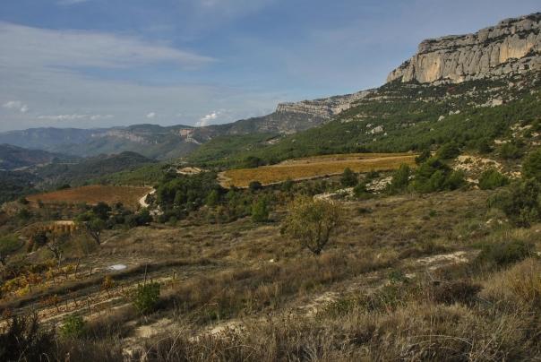 Via ferrata La Morera de Montsant (6)