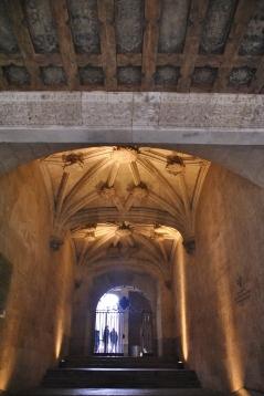Salamanca (331)