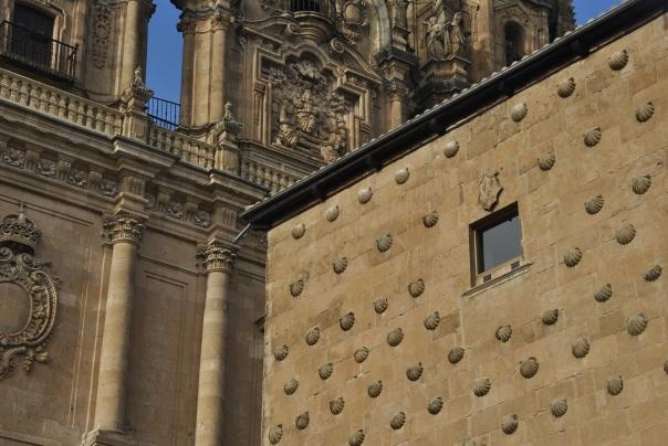 Salamanca (40)