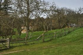 Surrey Hills (123)